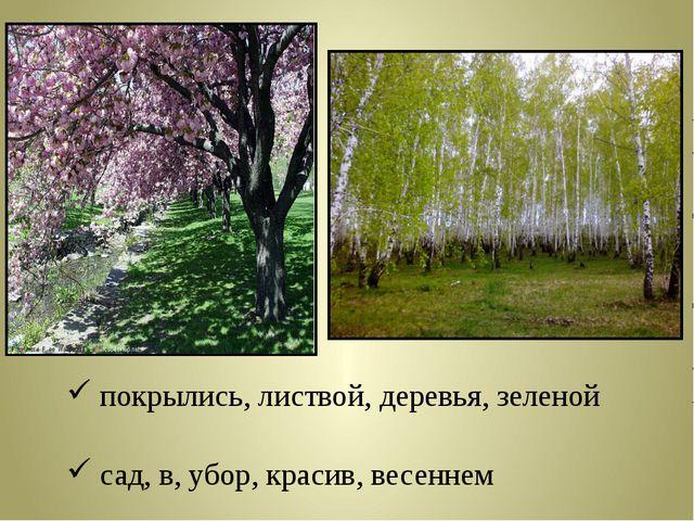покрылись, листвой, деревья, зеленой сад, в, убор, красив, весеннем