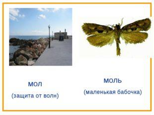 мол (защита от волн) моль (маленькая бабочка)