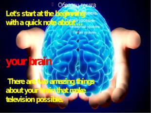 Let's start at the beginning with a quick note about …  your brain There are