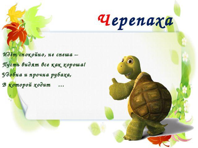Черепаха Идёт спокойно, не спеша – Пусть видят все как хороша! Удобна и прочн...