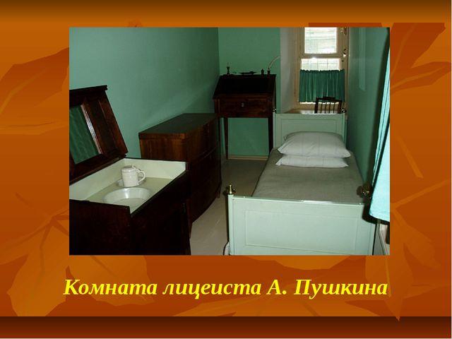 Комната лицеиста А. Пушкина
