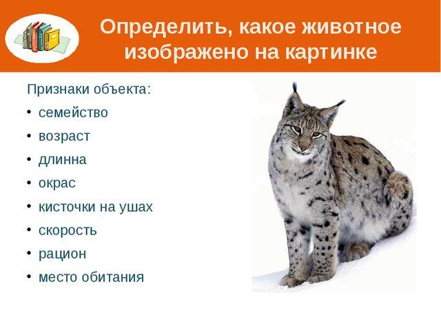 Определить, какое животное изображено на картинке Признаки объекта: семейство...