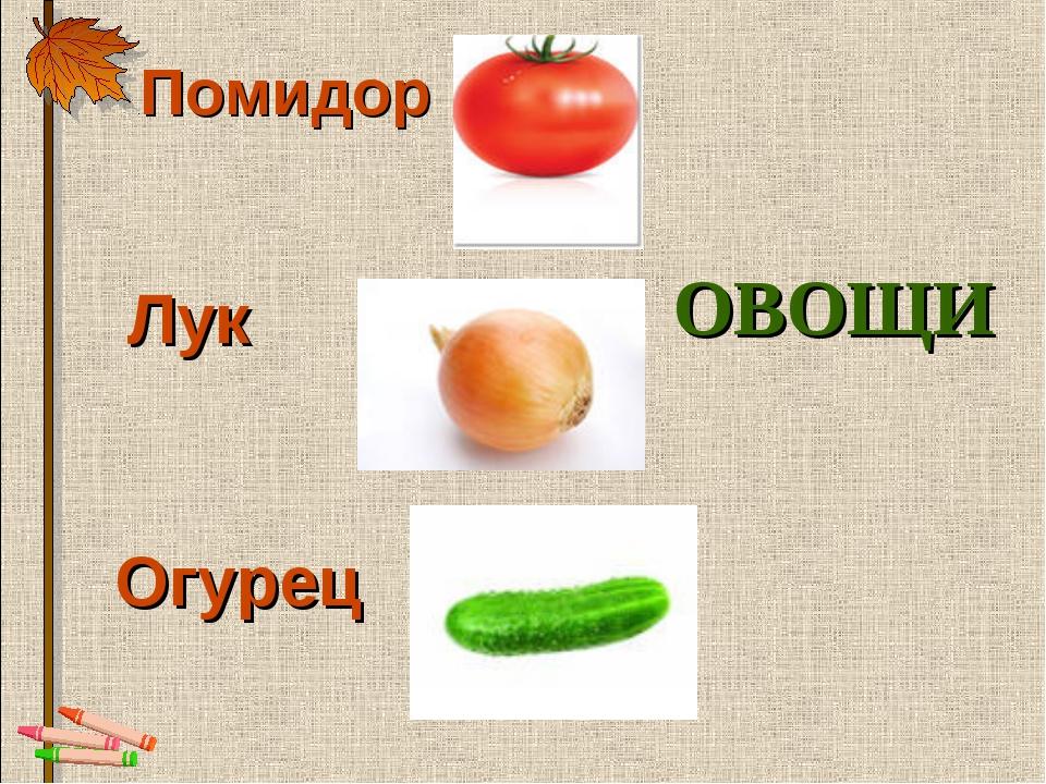 Помидор  Лук  Огурец ОВОЩИ