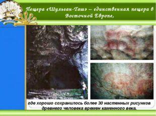 Пещера «Шульган-Таш» – единственная пещера в Восточной Европе, где хорошо сох