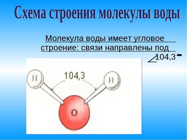 Молекула воды имеет угловое строение: связи направлены под 104,3