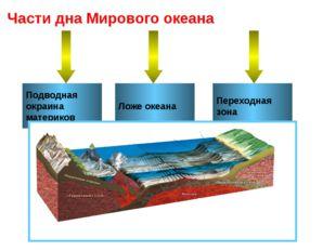 Подводная окраина материков Ложе океана Переходная зона Части дна Мирового ок