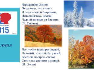 биология Чародейкою Зимою Околдован, лес стоит - И под снежной бахромою, Неп