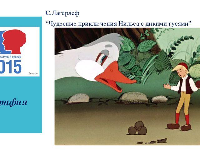"""география С.Лагерлеф """"Чудесные приключения Нильса с дикими гусями"""""""
