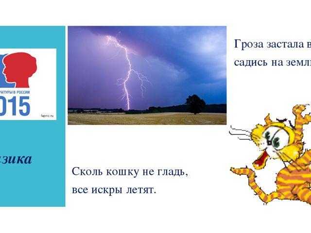 физика Гроза застала в поле – садись на землю. Сколь кошку не гладь, все иск...
