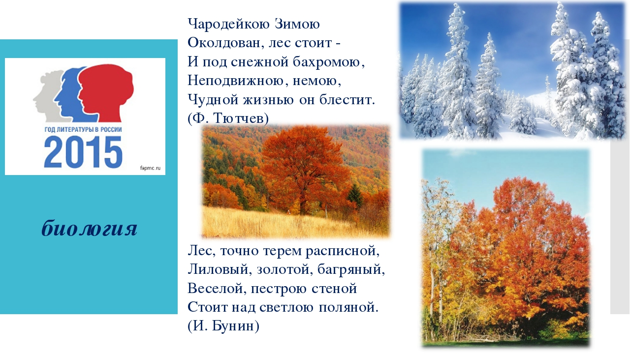 биология Чародейкою Зимою Околдован, лес стоит - И под снежной бахромою, Неп...