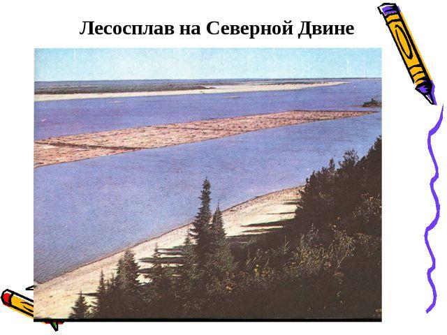 Лесосплав на Северной Двине