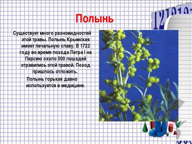 Полынь Существует много разновидностей этой травы. Полынь Крымская имеет печа...