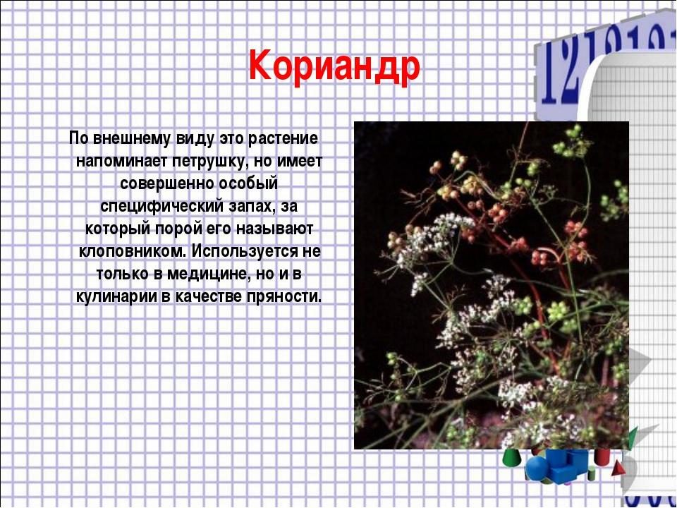 Кориандр По внешнему виду это растение напоминает петрушку, но имеет совершен...