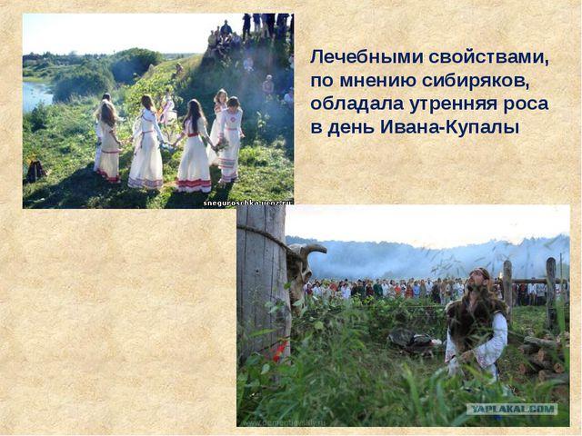 Лечебными свойствами, по мнению сибиряков, обладала утренняя роса в день Иван...