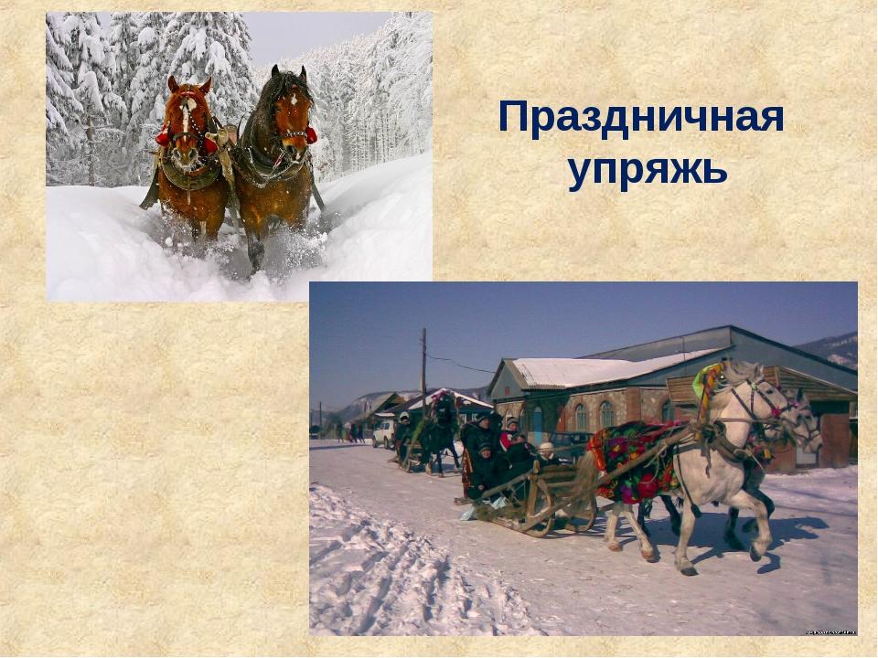 специальности мк сибирский крестьянин сайт сайт утверждает