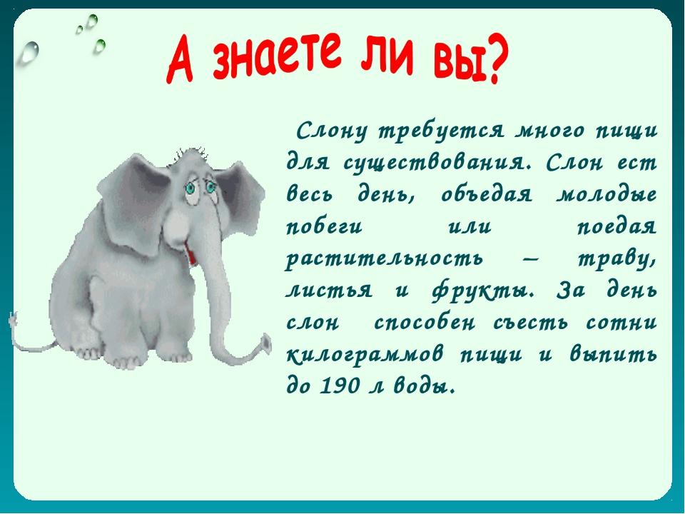 Слону требуется много пищи для существования. Слон ест весь день, объедая мо...