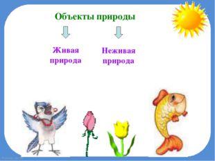 Объекты природы Живая природа Неживая природа FokinaLida.75