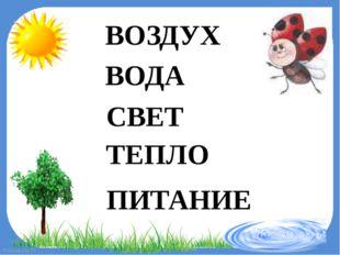 ВОЗДУХ ВОДА СВЕТ ТЕПЛО ПИТАНИЕ FokinaLida.75