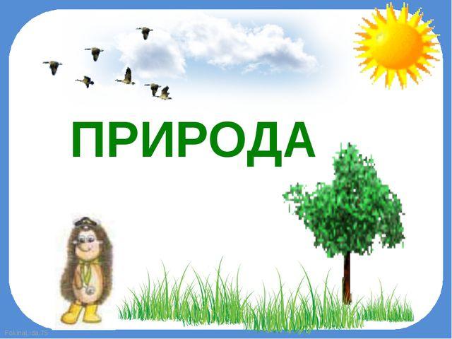ПРИРОДА FokinaLida.75