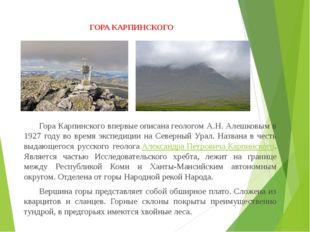 ГОРА КАРПИНСКОГО Гора Карпинского впервыеописанагеологом А.Н. Алешковым в
