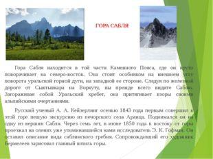 ГОРА САБЛЯ Гора Сабля находится в той части Каменного Пояса, где он круто по
