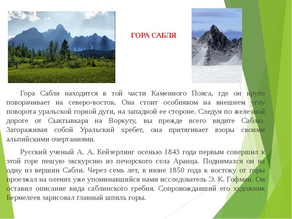 ГОРА САБЛЯ Гора Сабля находится в той части Каменного Пояса, где он круто по...