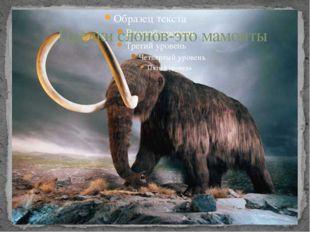 Предки слонов-это мамонты