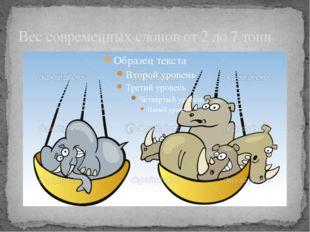 Вес современных слонов от 2 до 7 тонн