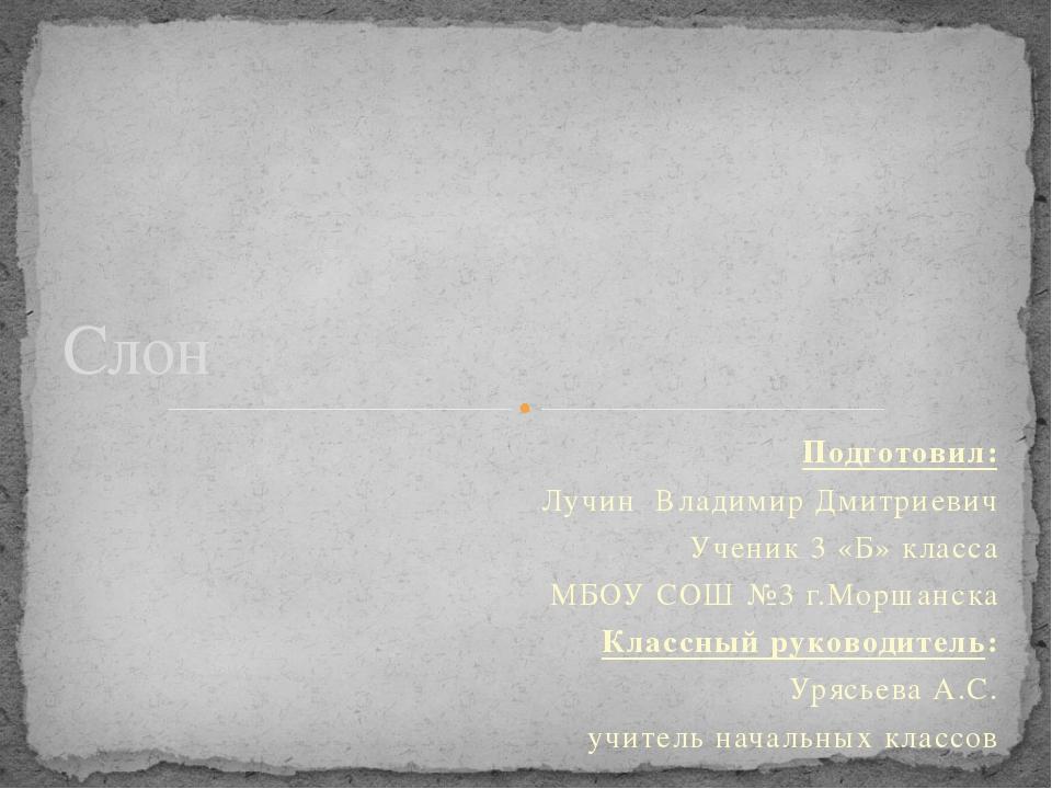 Подготовил: Лучин Владимир Дмитриевич Ученик 3 «Б» класса МБОУ СОШ №3 г.Морша...