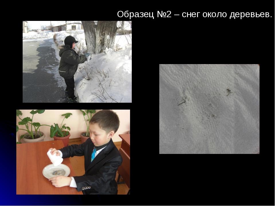 Образец №2 – снег около деревьев.