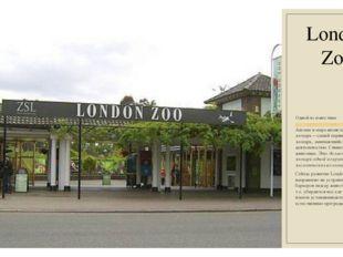 London Zoo Одной из известныхдостопримечательностей Лондона, Англии и мира я