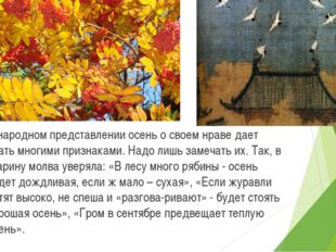 В народном представлении осень о своем нраве дает знать многими признаками.