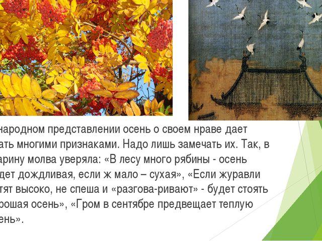В народном представлении осень о своем нраве дает знать многими признаками....