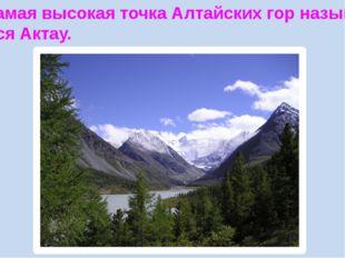 Самая высокая точка Алтайских гор называ- ется Актау.