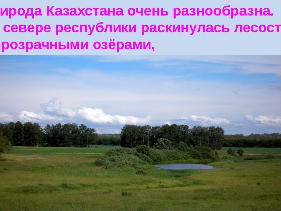 Природа Казахстана очень разнообразна. На севере республики раскинулась лесос...