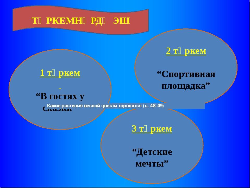 """1 төркем """"В гостях у сказки"""" 3 төркем """"Детские мечты"""" 2 төркем """"Спортивная пл..."""