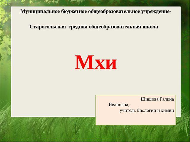 Муниципальное бюджетное общеобразовательное учреждение-Старогольская средняя...