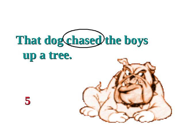 That dog chased the boys up a tree. 5
