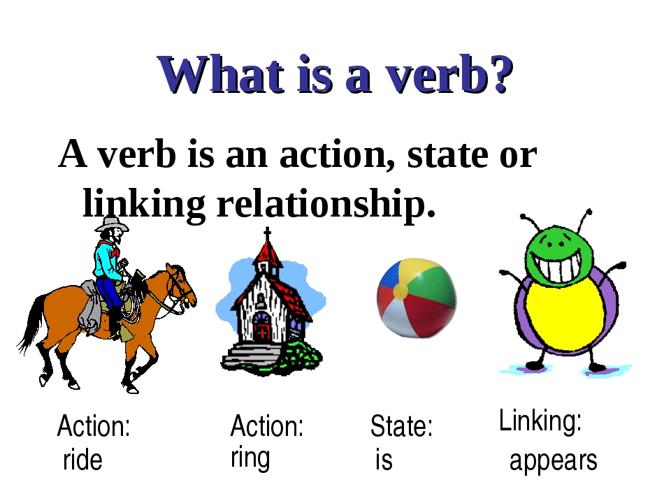 What is a verb? A verb is an action, state or linking relationship. Action: A...