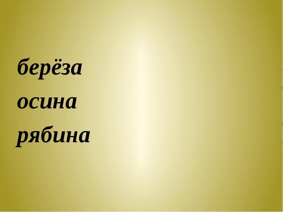 берёза осина рябина