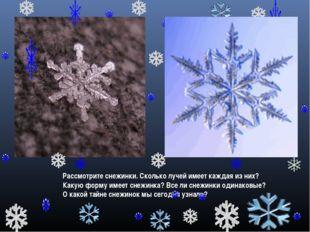 Рассмотрите снежинки. Сколько лучей имеет каждая из них? Какую форму имеет сн