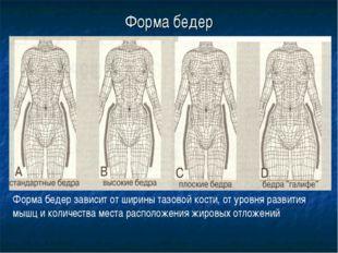 Форма бедер Форма бедер зависит от ширины тазовой кости, от уровня развития м
