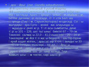 Қарақұйрық (лат. Gazella subgutturosa) – сүтқоректілер класының қуысмүйізділе
