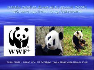 Жабайы табиғат Дүние жүзі қорының (WWF) эмблемасында үлкен панда бейнеленген