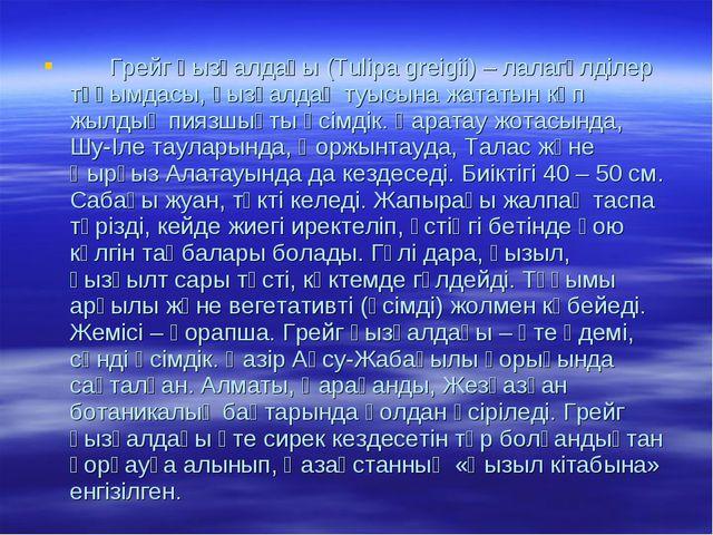 Грейг қызғалдағы (Tulіpa greіgіі) – лалагүлділер тұқымдасы, қызғалдақ туысын...