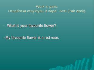 Work in pairs. Отработка структуры в паре. S=S (Pair work). What is your fav