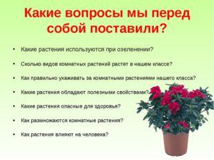 Какие вопросы мы перед собой поставили? Какие растения используются при озеле