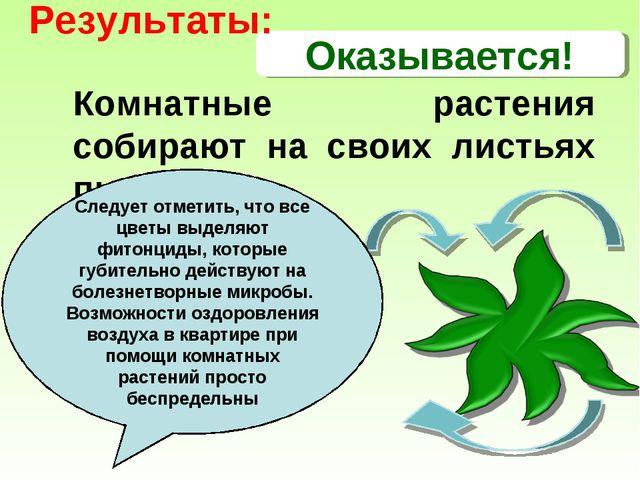 Оказывается! Комнатные растения собирают на своих листьях пыль Следует отмети...