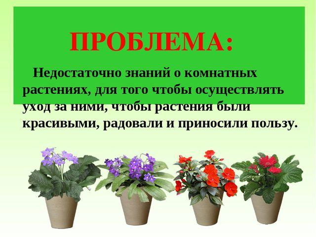 ПРОБЛЕМА: Недостаточно знаний о комнатных растениях, для того чтобы осуществ...
