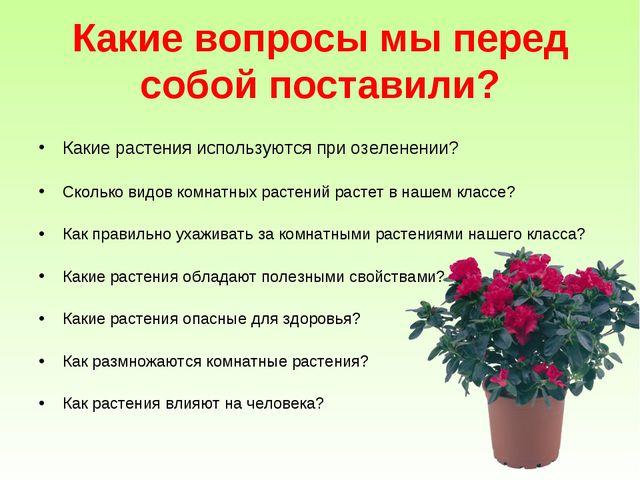 Какие вопросы мы перед собой поставили? Какие растения используются при озеле...